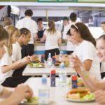 給食は毎日味見されているということに関する雑学