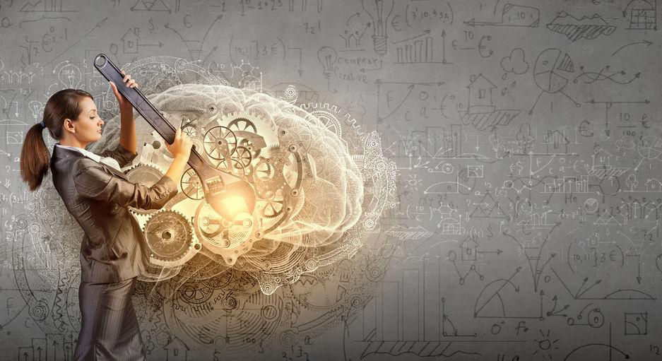 脳の容量に関する雑学