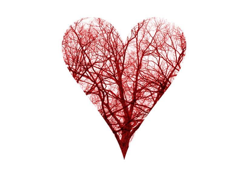 人間の血管をひとつにつなげると地球2周半の長さということに関する雑学