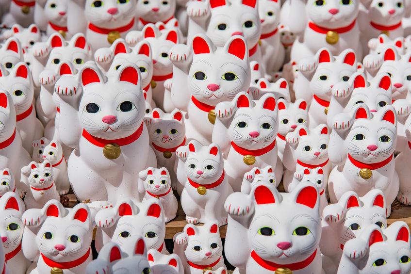 招き猫はどちらの手を上げているかでご利益が変わる雑学