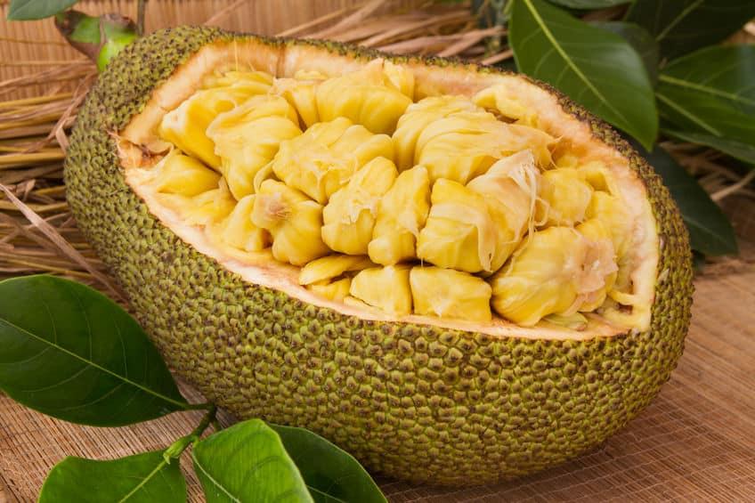世界で最も巨大な果物ジャックフルーツに関する雑学
