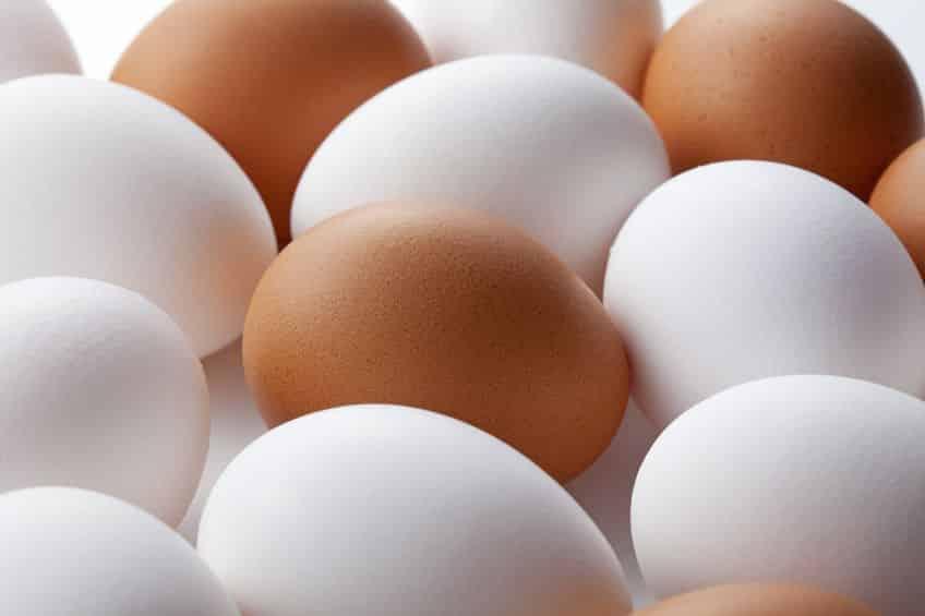 卵を長持ちさせる方法は?に関する雑学