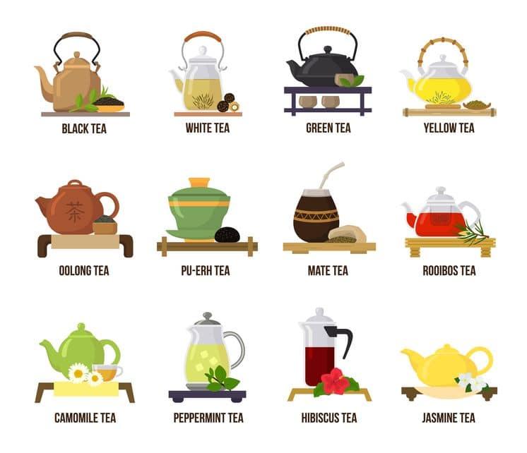 お茶の雑学!緑茶/紅茶/烏龍茶の茶葉は一緒!なにが違う?というトリビアまとめ