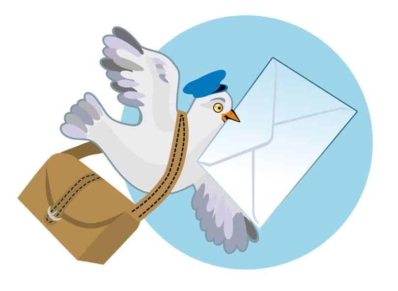 昔の新聞社は、伝書鳩を使って原稿を送っていたという雑学