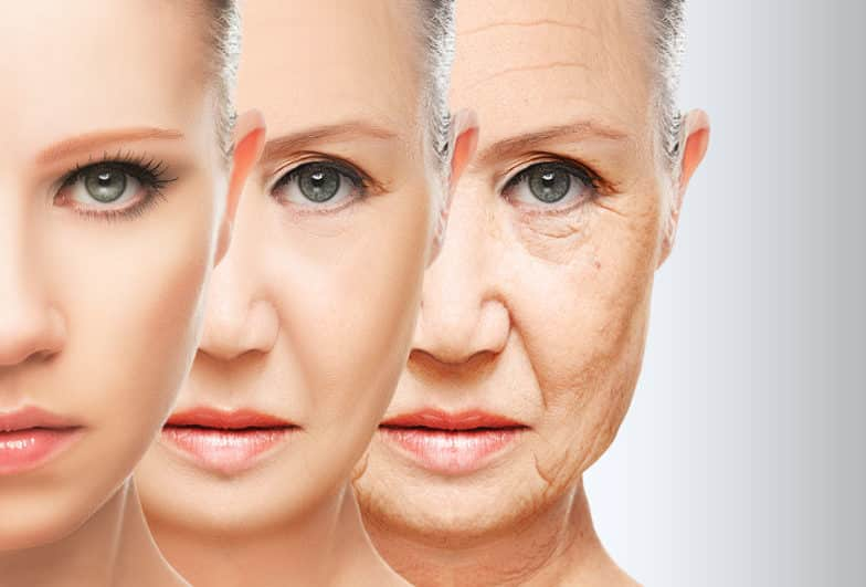 老化の一番の原因は呼吸という雑学