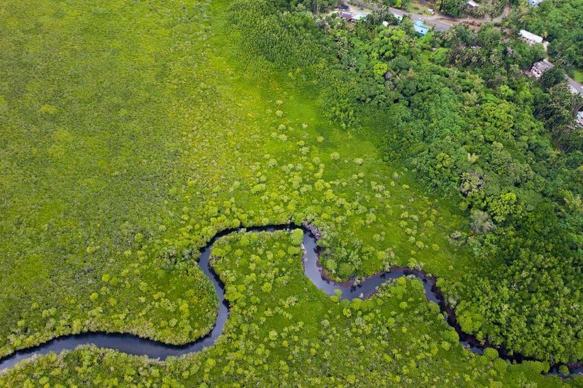 世界の長い川ランキングに関する雑学