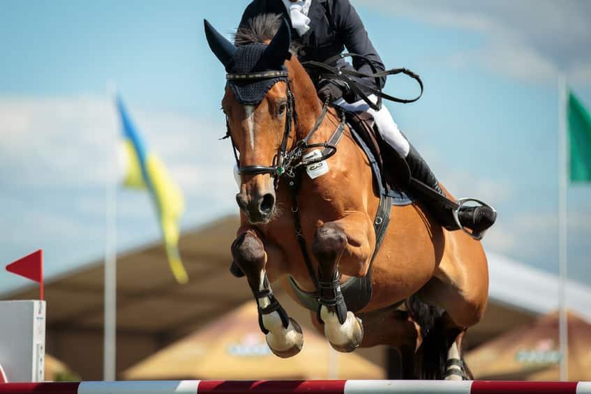 馬に乗るときの体重制限は「馬術」にはないという雑学