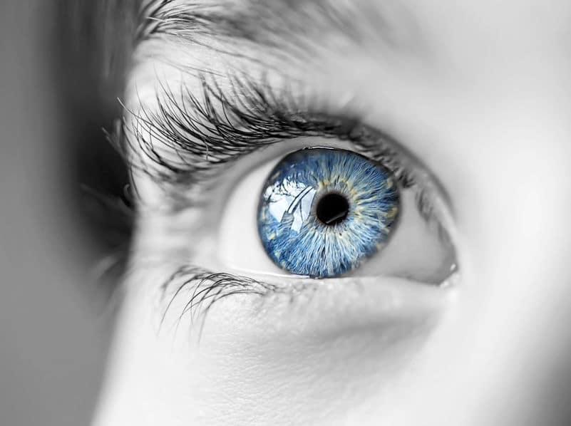 人間の目は、視野全部で6億画素についてのトリビア