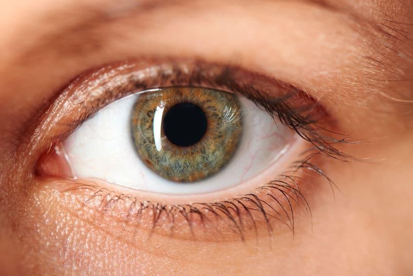 視線に注目!目の動きでウソを見抜く方法についてのトリビア