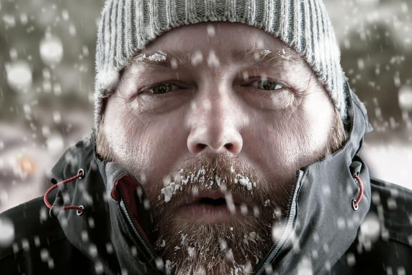 南極でも本当は風邪をひく?というトリビア