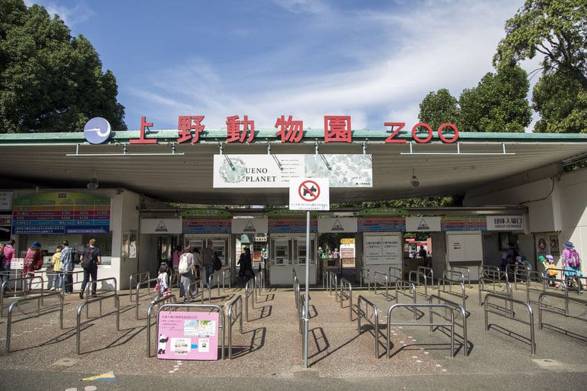 日本に初めて来たキリンのせいでクビになった園長がいるという雑学