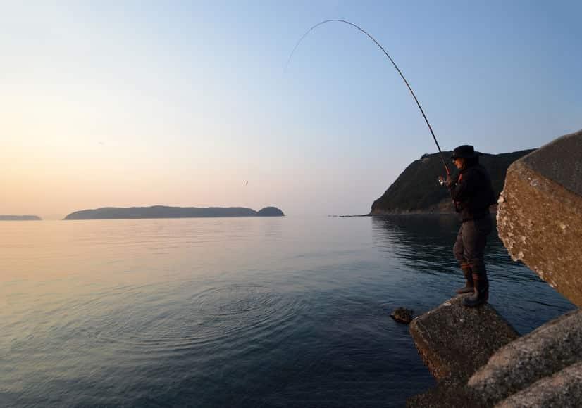 人間の体温で魚はやけどする?に関する雑学