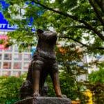渋谷の「忠犬ハチ公」の像は二代目?に関する雑学