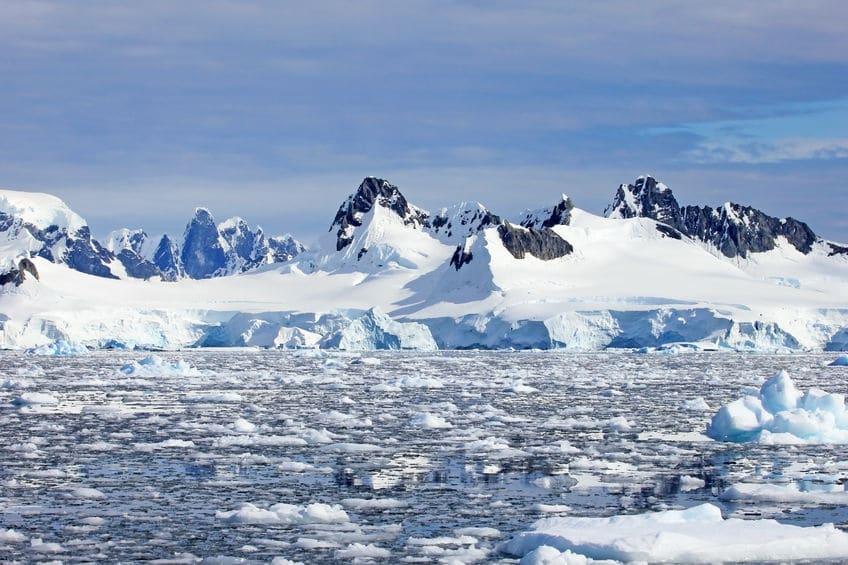 南極では風邪のウイルスが生きていけないというトリビア