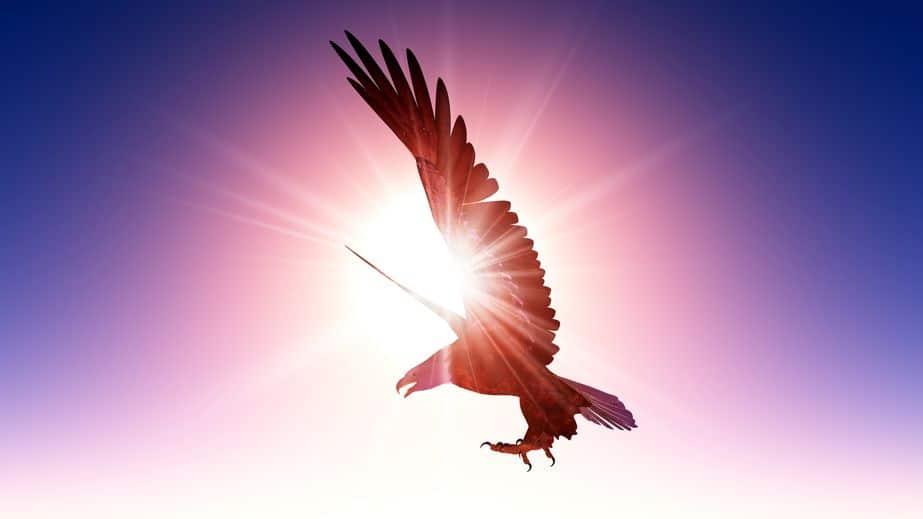 SとBはは太陽(sun)と鳥(bird)を表すというトリビア