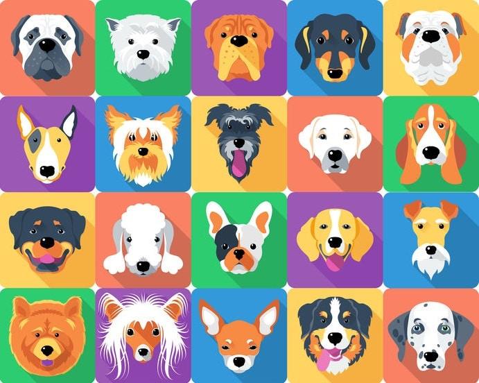 嘱託警察犬なら犬種の制限がないというトリビア