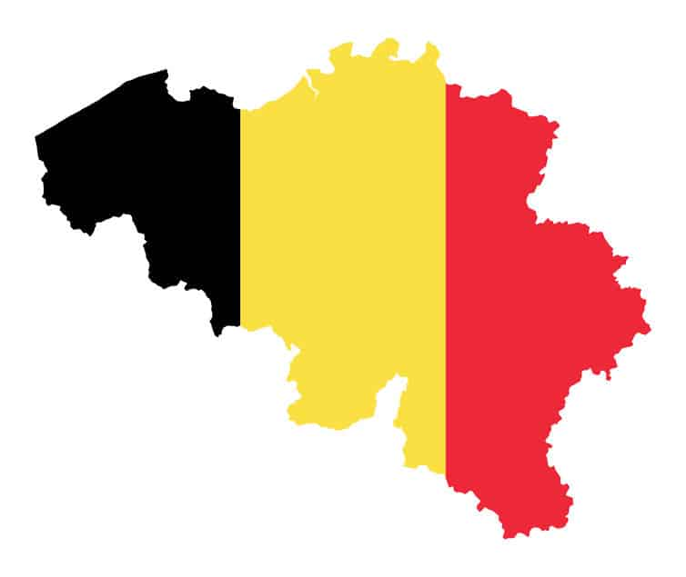 フライドポテトは17世紀後半のベルギーで誕生についてのトリビア
