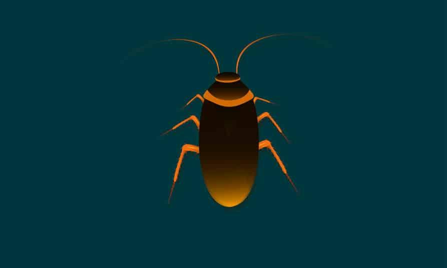 海外では「ゴキブリ早食い大会」があるという雑学