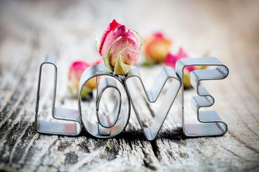 明治時代まで日本に「愛する」という言葉はなかったという雑学