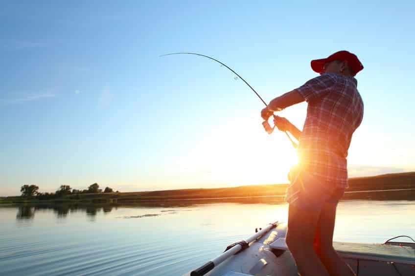 魚は人間の体温でやけどするってホント?魚は丁重にという雑学まとめ