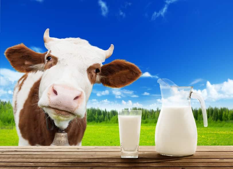 牛乳はペットボトルで販売すると違法になる?という雑学