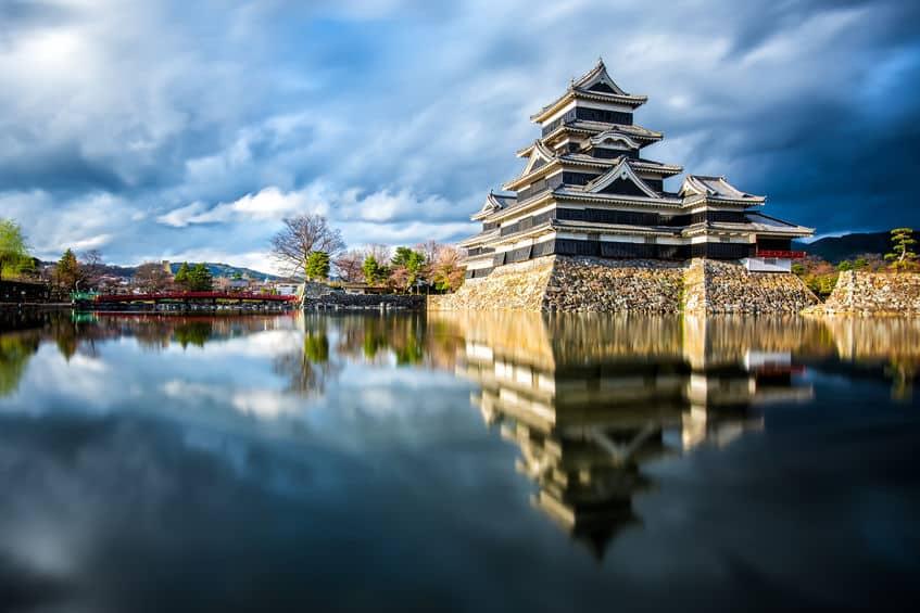 国宝・松本城にも松ノ木が植えられている