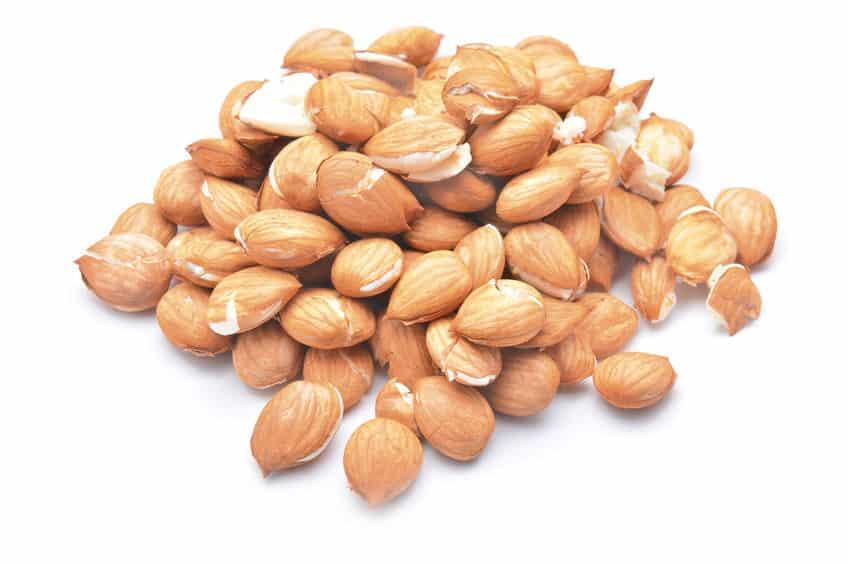 杏仁豆腐の原料である「杏仁」は咳や喘息に効く薬というトリビア