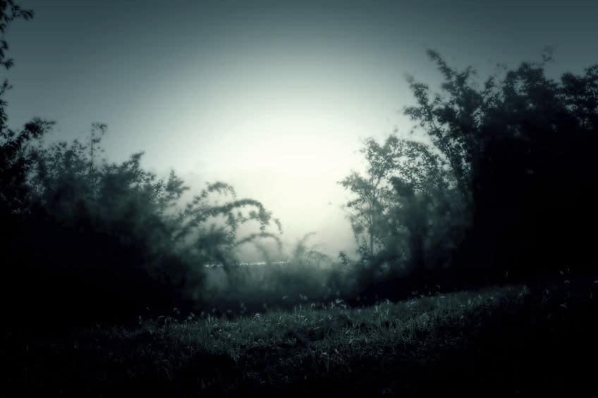 三大幽霊と怪談についてのトリビア