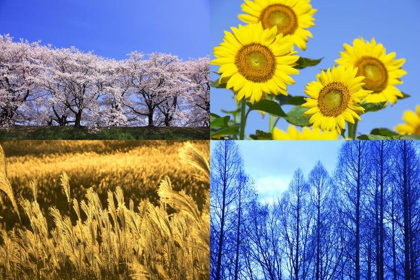 節分とは、季節の変わり目の前日だったというトリビア
