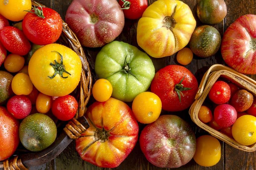 トマトは野菜?果物?モメた結果、裁判になったことがあるというトリビアまとめ