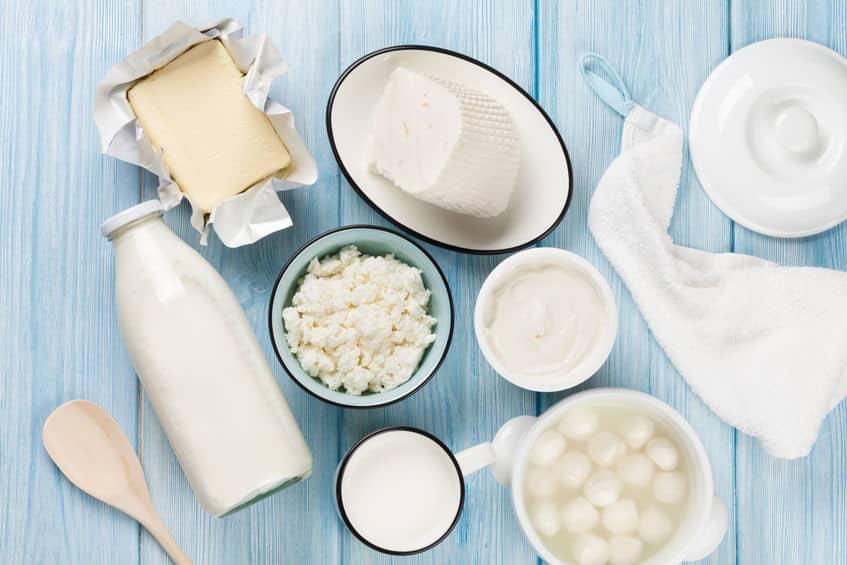 ヤギのミルクで蘇を作ってみるというトリビア