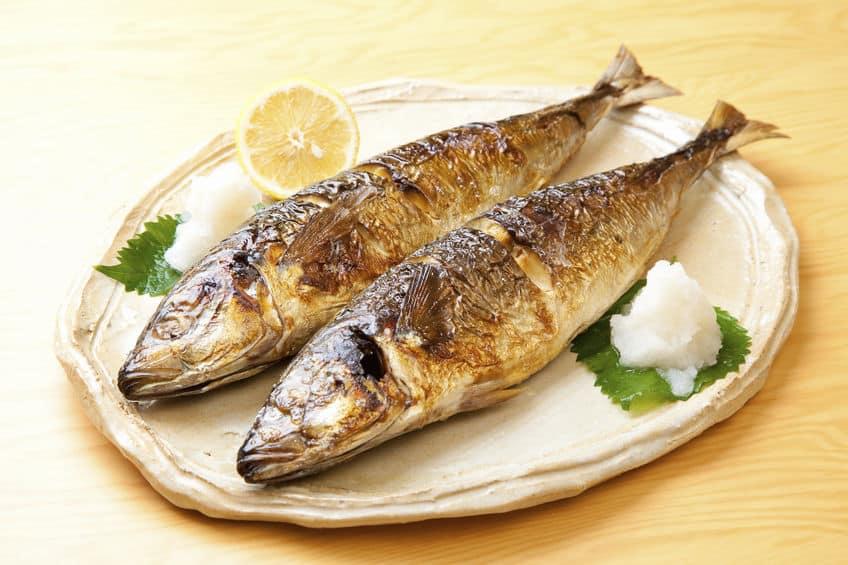 合理的!焼き魚+大根おろしの理由は美味いからだけじゃなかったという雑学まとめ