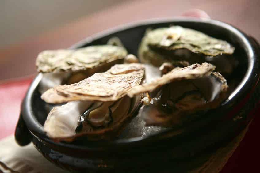 味が違う?生食用より加熱用牡蠣の方が旨みは濃厚というトリビア