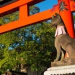 稲荷神社の神様は狐ではないという雑学