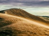 砂漠と砂丘の違いに関する雑学