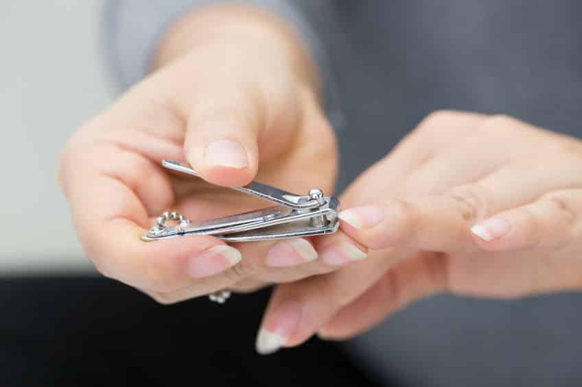 理想的な爪の長さは2~3mmというトリビア