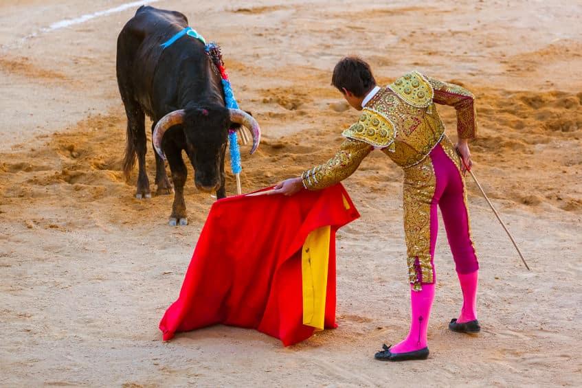 闘牛で赤い布を振った時、牛より人間のほうが興奮しているという雑学