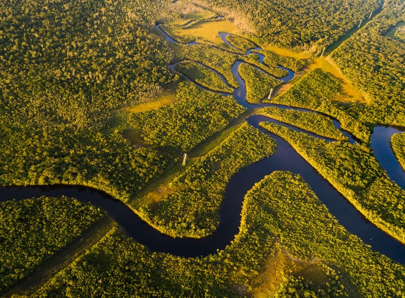 世界で1番長い川はアマゾン川かもしれない