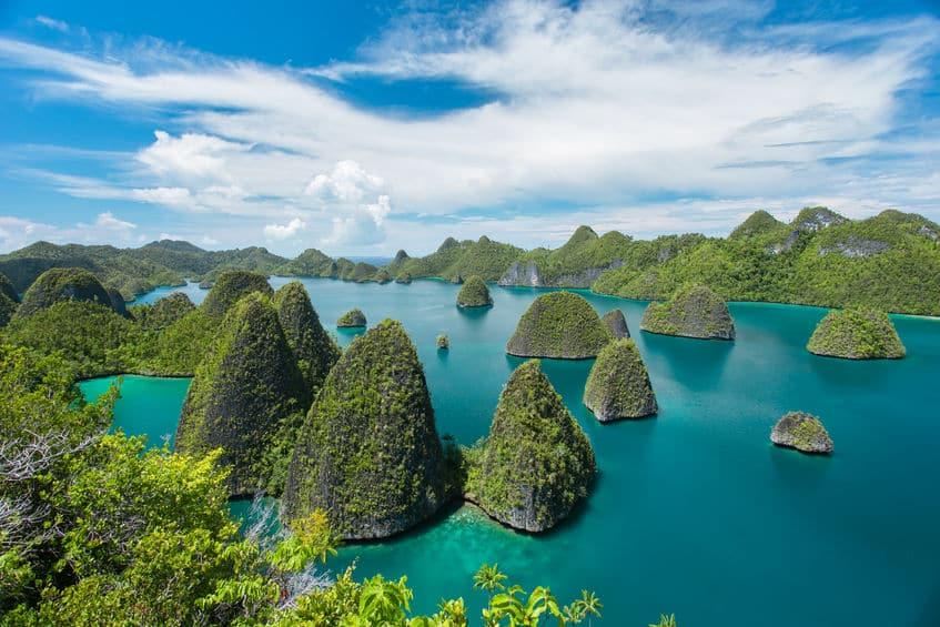 ニューギニアにピトフーイは済んでいる