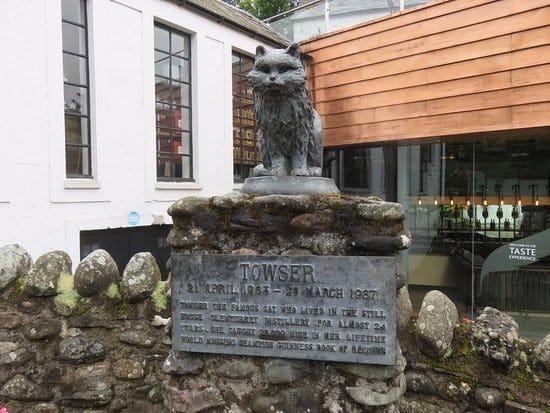 酒を守るぜ!スコットランドの醸造所では猫が飼われている【ウイスキーキャット】についての雑学まとめ