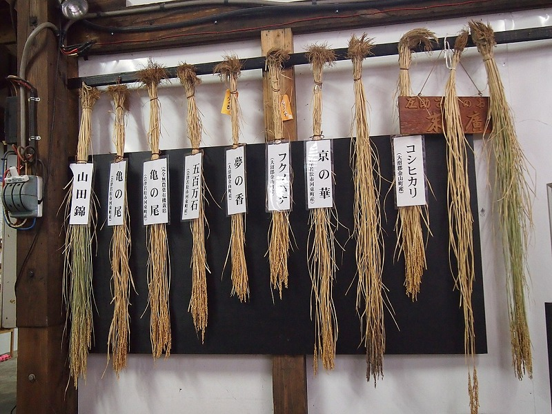 日本酒によく使われるのは専用の米についてのトリビア