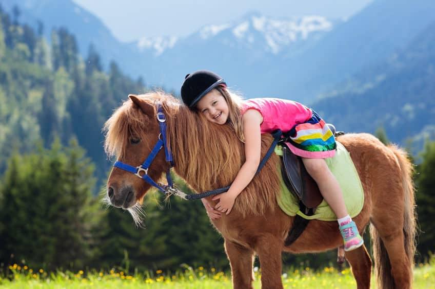 """戦国武将が乗っていた馬は""""ポニー""""。サラブレッドじゃないのか…という雑学まとめ"""