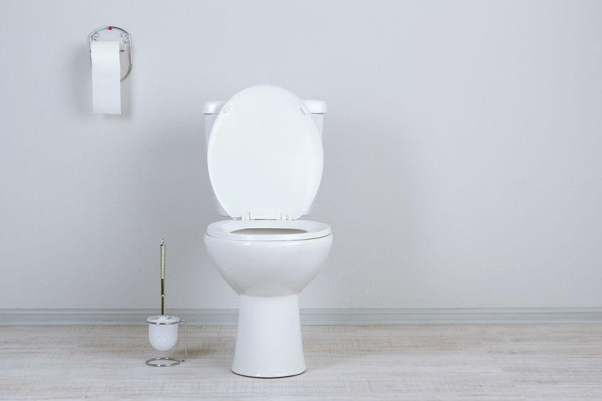 昔も今もひどすぎる、ベルサイユ宮殿のトイレ事情についてのトリビア