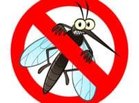 蚊は産卵期のメス以外は無害という雑学