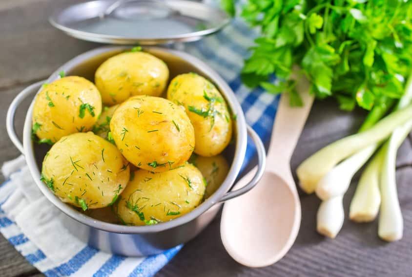 """""""ジャガイモの芽=発ガン性物質""""はウソ?食中毒は恐ろしい。という雑学まとめ"""