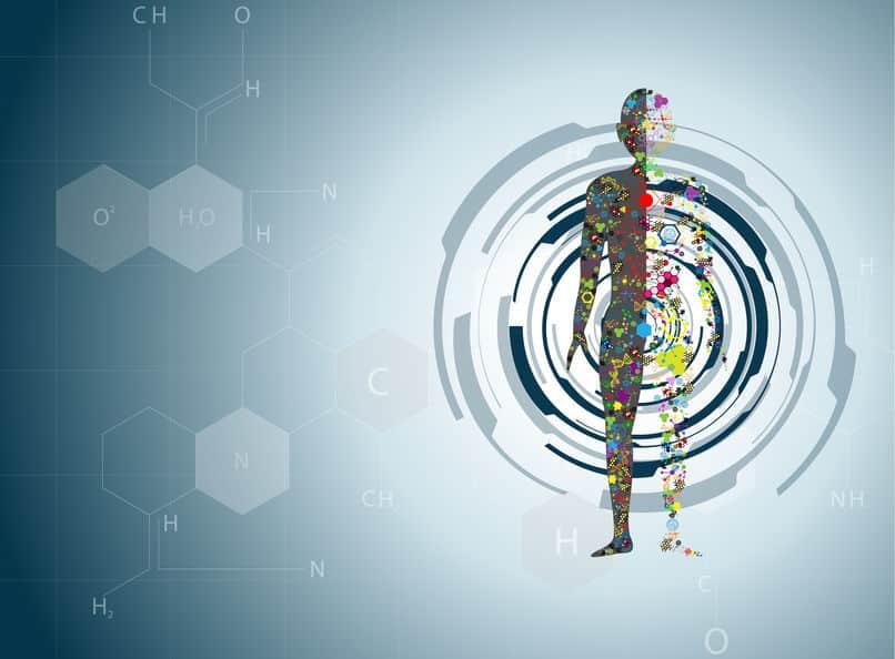 DNAは形成される生物の設計図についてのトリビア