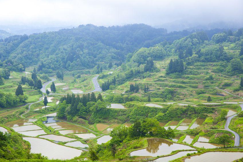東京より多かった!新潟県には人口第一位だった時代があるという雑学まとめ