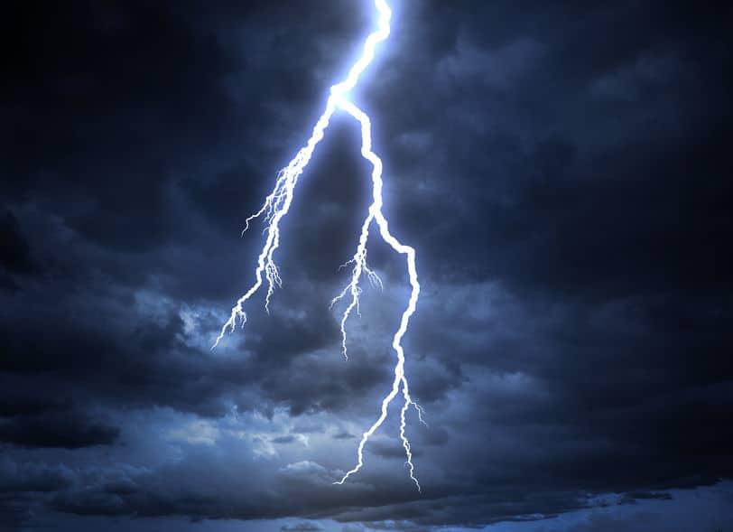 雷は「止まっては進む」という動きを繰り返しているというトリビア