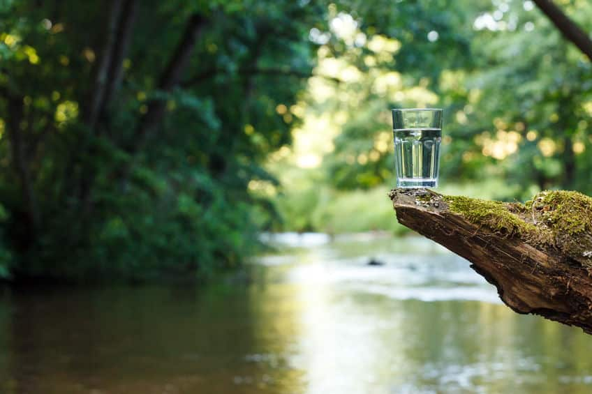 自然の中で水を得る方法に関する雑学