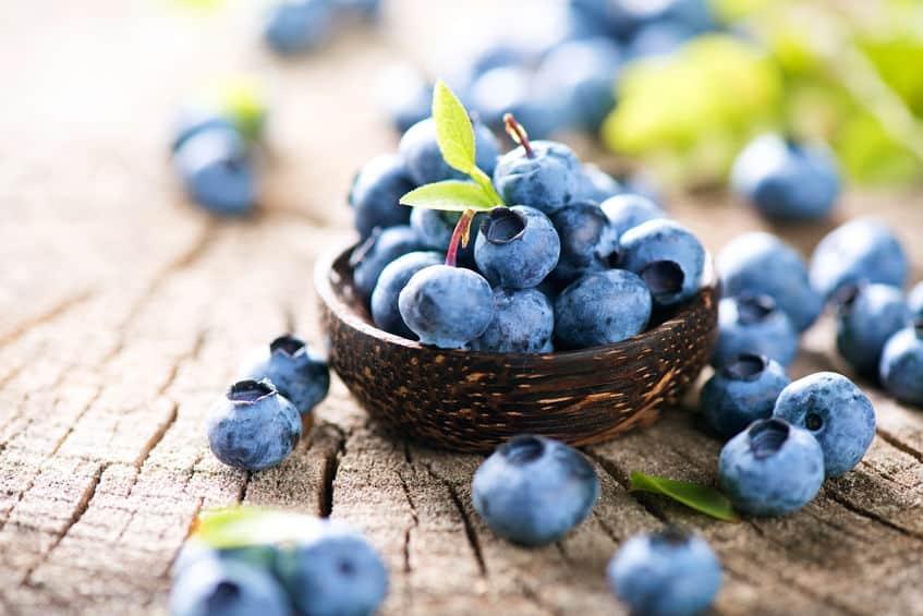 ブルーベリー最強説。アンチエイジングの宝庫の果物なんですという雑学まとめ